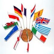 fanioane steaguri stegulete timisoara2 180x180 Steaguri  Fanioane   Stegulete